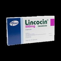 lincocin box