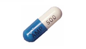 ampilicin